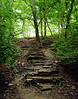 Forest Staircase - Waterfall Glenn, Darien, IL