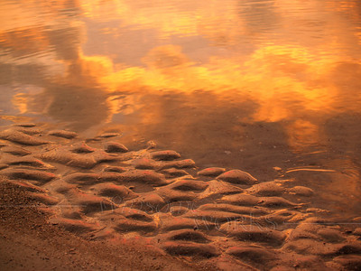 Dawn Sand and Sea Reflections, Hunting Island SC