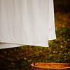 117/365 - Simply Cotton White