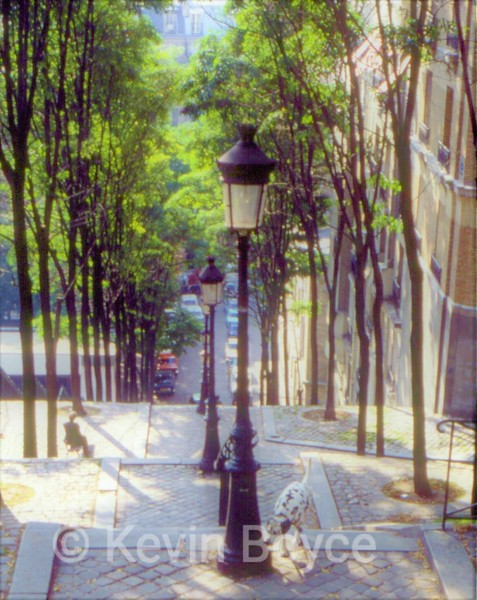 Man and Dog, Steps of Montmarte