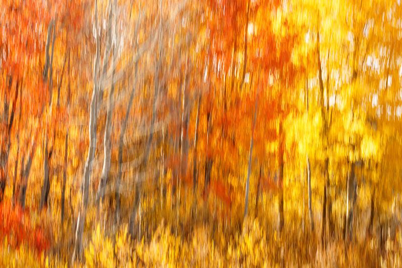 Study In Abstract No. 22, Grand Teton NP