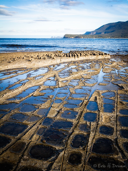 The Tessellated Pavement, Tasmania