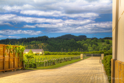 Craggy Range Vineyards, Hawkes Bay, New Zealand