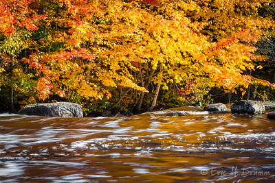 Fall Colours, South River Cascade, Almaguin Highlands, Ontario