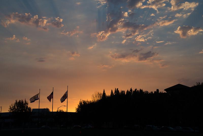 NSJ Sunset