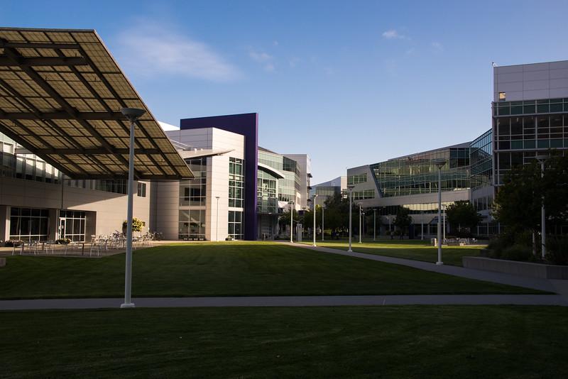 Purpleplex