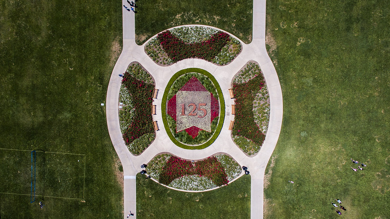 Shot from Above