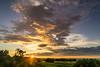 Sunrise Outback