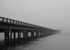 Bridge of Uncertainty