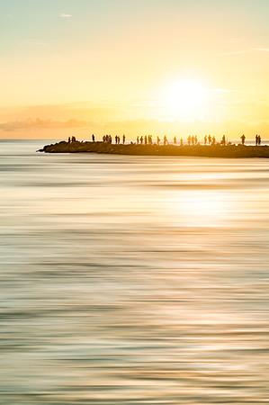 Florida Sun