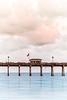 Water Pier Cloud