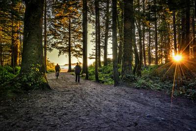 Sun on the Path