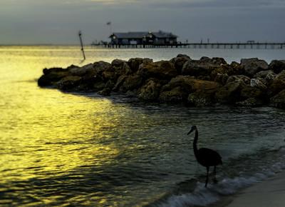 Heron Rocks Pier