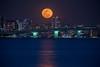 Super Blue Blood Moon over Sarasota