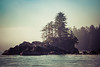 Ucluelet Inlet