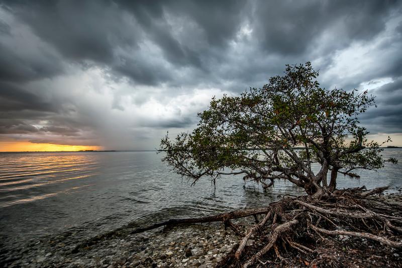 Sanibel Thunderstorm