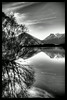 Glenorchy Stillness
