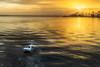 Sunrise at Riverwalk