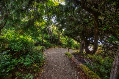 Pacific Trail
