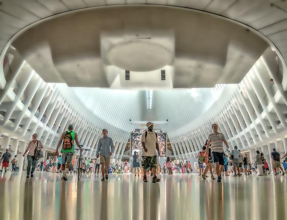 Under the Oculus