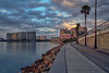 Section of Sarasota