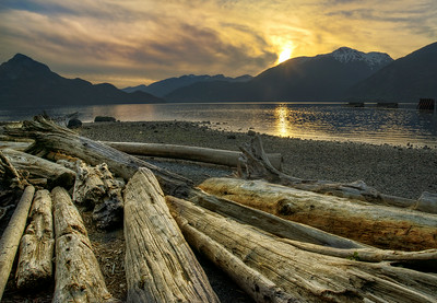 Horseshoe Bay Logs