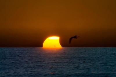 Partial Eclipse Sunset