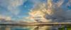 Palmetto and Bradenton Panorama
