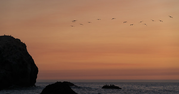 Point Lobos Sky