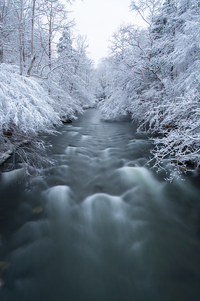 """Little Pigeon River"""