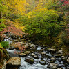 """Autumn At Tremont"""
