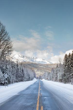 Road to Albert