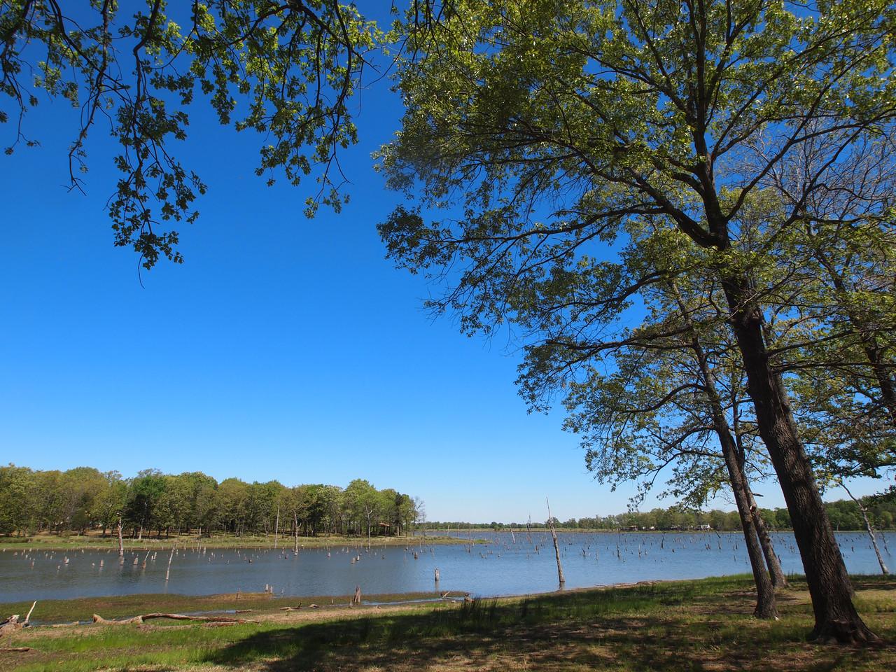 Lake Fork Spring Landscape  Order Code: B12