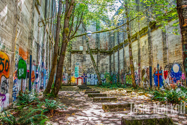 """This was once the fuel house at the old mill in Vernonia, Oregon. Today, its roof is gone and trees grow inside. Visitors have decorated it with spray paint in a beautiful display of decorative graffiti.<br /> <br /> Printed on aluminum with UV-protective coating<br /> 16"""" x 23.5""""<br /> $280<br /> <br /> 104"""