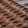 """Fantastic rusty grate with hints of paint in a Yamhill junkyard. I love the range of colors in the rust and the texture throughout. <br /> <br /> Metal print with float mount<br /> 8"""" x 12""""<br /> $70<br /> <br /> 110"""