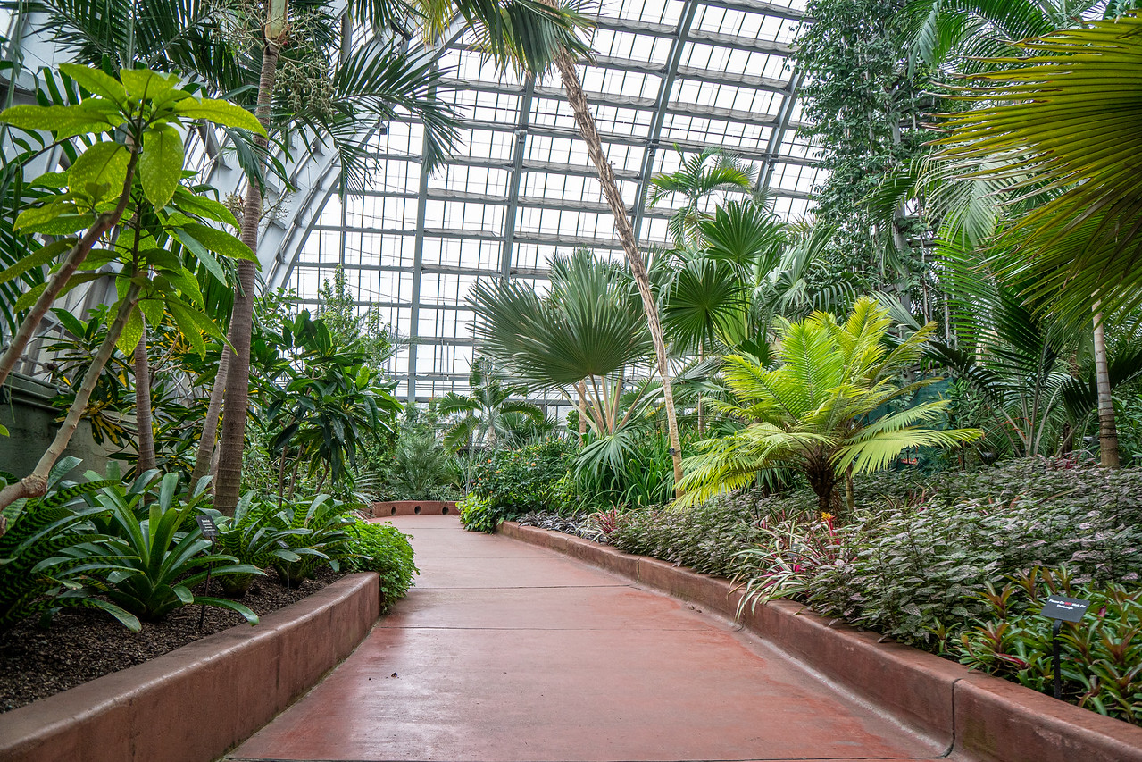 One of the walkways around the Palm House of the Garfield Park Conservatory