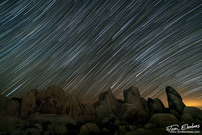 Star Trails at Joshua Tree N.P.