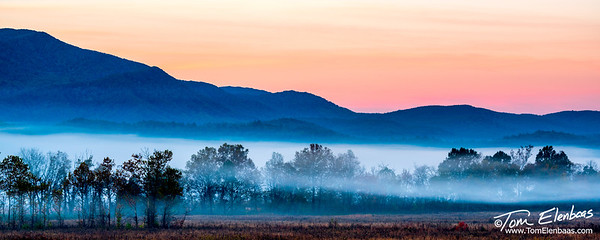 Early morning fog at Cade's Cove, Great Smoky Mountains N.P.