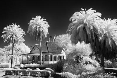 Fullerton Arboretum I