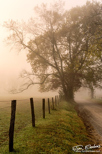 Sparks Lane, Cades Cove, Great Smoky Mountains N.P.