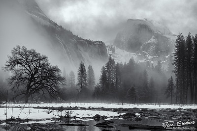Half Dome from Cooks Meadow, Yosemite N.P.