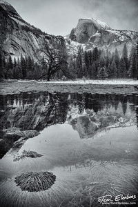 Reflections of Half Dome, Yosemite N.P.