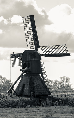 Scoop mill Honigfleth