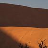 Dry Vlei, Soussevlei, Namibia.
