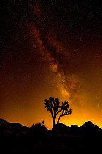 Caramel Milky Way