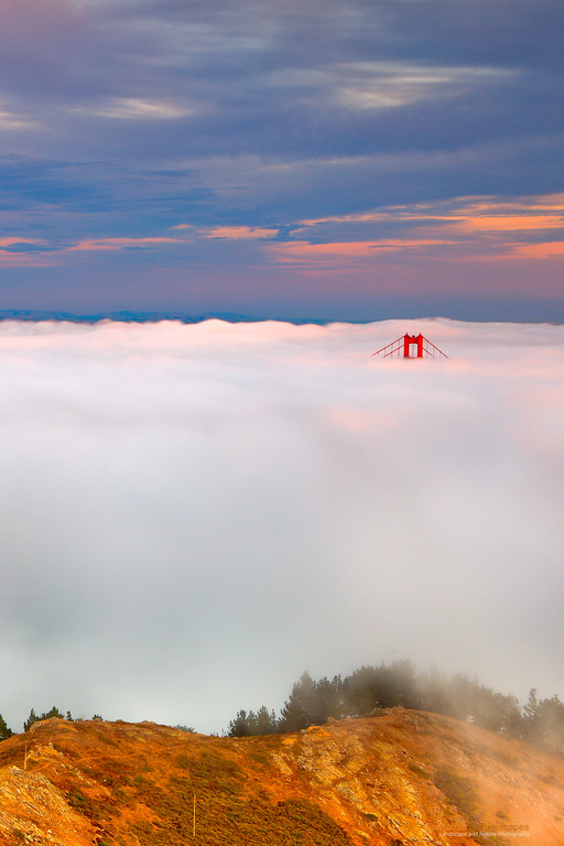 """Golden Gate: Marin Headlands View""<br /> Location: Marin Headlands, San Francisco, California.<br /> <br /> Sometimes during summer months the fog rolls in just thick enough to leave the tip of the south tower of Golden Gate exposed. As I drove on the bridge through the fog I could hardly imagine the view I was about to see from the hill. This evening was very special.<br /> <br /> Tech Info and Tip:<br /> Lens: Canon 24-70mm f/2.8L @42mm<br /> Camera: Canon 5D Mk II<br /> Exposure: 2.5sec at f/13 and ISO 50<br /> Filters: 2 stop SinghRay ND grad hard edge<br /> <br /> The presence of high clouds helped a lot to make this image. Fog in San Francisco is mostly a summer phenomenon when high clouds are difficult to come by."
