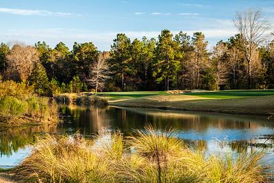 fallen-oak-golf-photography--4