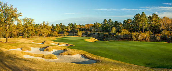 fallen-oak-golf-photography--7