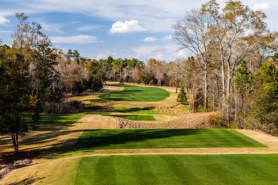 fallen-oak-golf-photography--6