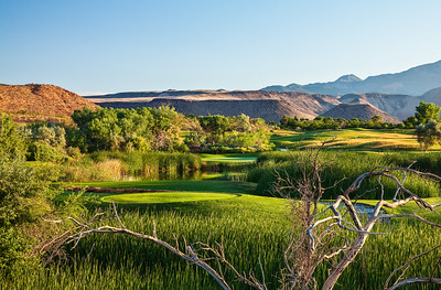 green-spring-golf-course-by-brian-oar-11